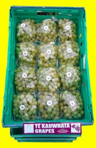 White Almeria variety grapes ready for dispatch