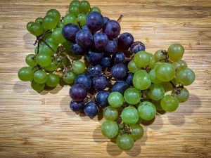 Freshly harvested black albany surprise and white almeria organic grapes